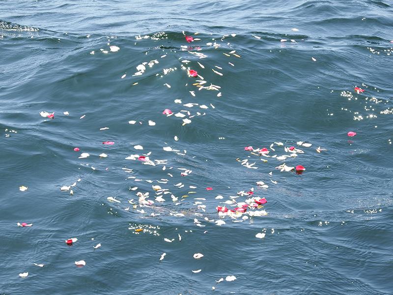 代行海洋散骨イメージ