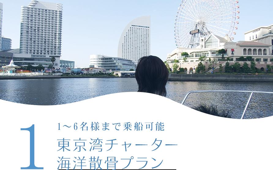 1 東京湾チャーター海洋散骨プラン